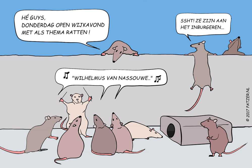 Ratten_1000
