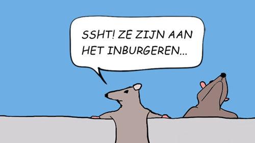 Ratten_PART