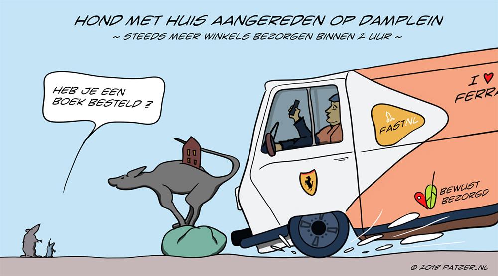 Hond met huis aangereden